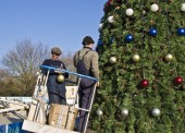 В Темрюке на площади Труда установили главную новогоднюю ёлку