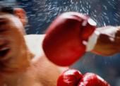 Наши боксеры вернулись в Темрюкский район с очередной победой
