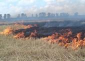 Экстренное предупреждение о чрезвычайной пожароопасности 5-го класса в Темрюке