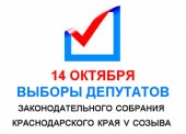 Итоги выборов депутатов ЗСК края 5 созыва по Темрюкскому району