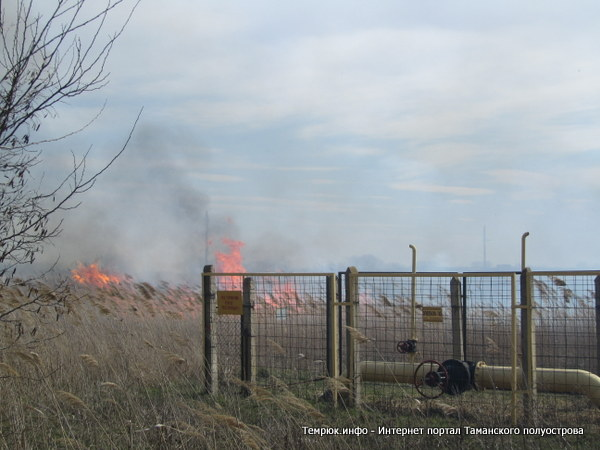 Пожар в Темрюкском районе