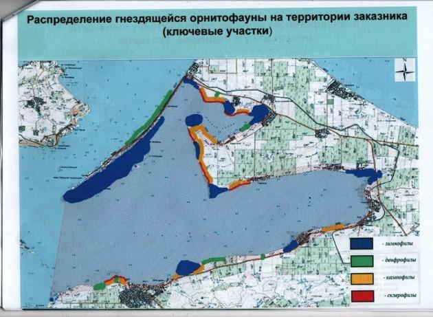tamanskiy-zakaznik-5-630x461.jpg