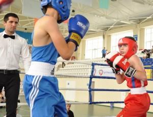 Бокс, турнир, спорт