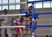 Темрюкские боксеры привезли медали с турнира