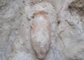 Бомбу времен ВОВ обнаружили в станице Тамань