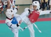 Соревнования по тхэквон-до (WTF)  на Кубок депутатов МО Темрюкский район прошли в Голубицкой