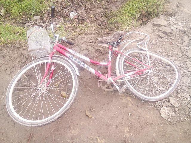 фото вело