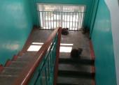Как быть если твой двор превратили в кошачий туалет  ?