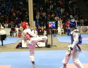 Темрючане заняли первое и второе места на Всероссийских соревнованиях по тхэквондо