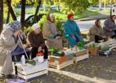 Штраф от 3000 до 5000 рублей грозит пенсионерам за подработку или торговлю своим урожаем.