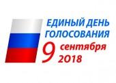 Итоги выборов в Темрюкском районе