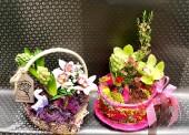 Цветы ко дню матери в Темрюке