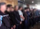 В Темрюкском районе, в поле обнаружили общежитие мигрантов (Видео)