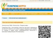 """Выпуск СМИ """"Темрюк.Инфо"""" временно приостановлен"""