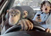"""""""Водятлы"""" — кто это и что нужно знать нормальным водителям?"""