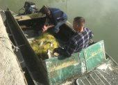 Анапские полицейские задержали браконьеров в Темрюке