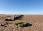Азовское море отступило на 100 метров