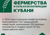 Как поддерживают в Краснодарском крае сельское хозяйство