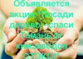 """Объявляется акция:""""Посади дерево - спаси Тамань от химзаводов ОТЭКО!"""""""
