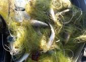 На берегу Ахтанизовского лимана задержали браконьера, ему грозит срок