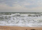 9 интересных фактов об Азовском море, которые вы могли не знать