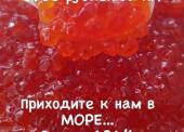 В магазине «Море» красная икра от 3900 за 1 килограмм