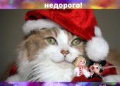 """Подарки в магазине """"Котик"""""""