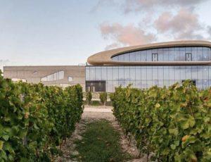 Анапская винодельня претендует на международную премию в области архитектуры